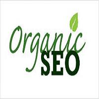 SEO / Organic Marketing