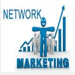 Network Marketing – The Best Option